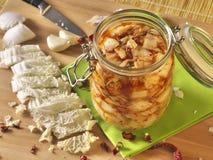 Ricetta casalinga di kimchi Fotografia Stock Libera da Diritti