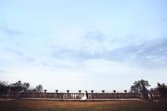 Rich ansar, och gräs för väggen för brudhuggingoutdoorbakgrund värme a Arkivbilder
