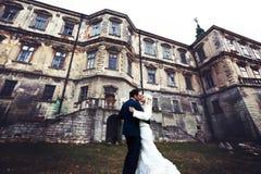 Rich ansar, och gräs för väggen för brudhuggingoutdoorbakgrund värme a Royaltyfri Fotografi