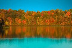 Rich Autumn Colors Royalty Free Stock Image