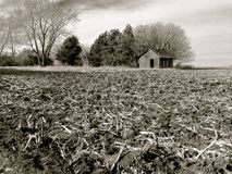 Free Rich, Black Soil Of Illinois Farm Field After Harvest Royalty Free Stock Photo - 107235935