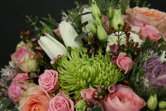 Rich bouquet of chic flowers. Сolorful rich bouquet of chic flowers chrysanthemums roses and others royalty free stock photos