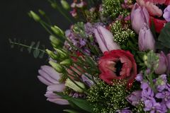 Rich bouquet of fresh roses and tulips. Сolorful rich bouquet of chic fresh roses tulips and others Stock Images