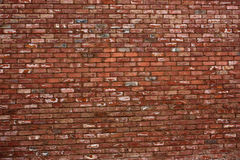 Rich Brick Wall