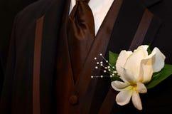Rich Brown Tuxedo Stock Photos