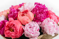 Rich bunch of peonies and tea roses on white background. Close-up rich bunch of peonies and tea roses on white background Royalty Free Stock Images