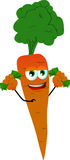 Rich carrot Royalty Free Stock Images
