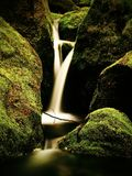 Rich cascade on small mountain stream, water is running over green mossy boulders. Royalty Free Stock Photography