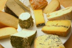 Rich cheese platter Stock Photos