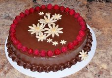 Rich chocolate cake decorated with fresh raspberries Royalty Free Stock Image