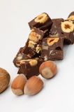 Rich Chocolate Fudge with nuts Royalty Free Stock Photo