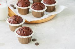 Rich chocolate zucchini muffins on a wooden round plate. White s royalty free stock photo