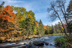 Rich colors of an autumn forest on a stony riverside. Near Emsdale town, Ontario, Canada Royalty Free Stock Photo