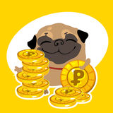 Rich dog pug with gold coins Stock Photo