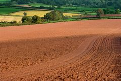 Rich Earth. Newly ploughed and tilled  rich fertile earth ready for winter crop, early autumn uk Royalty Free Stock Photo