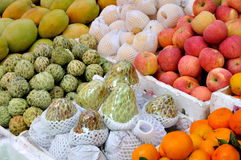Rich fruit. Various fresh fruit for maketing sales, shown as raw and fresh fruit, and healthy life style Royalty Free Stock Photography