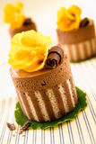 Rich Gourmet Chocolate Desserts. Of a striped cake base topped with chocolate and mousse and a decorative yellow flower Royalty Free Stock Photos