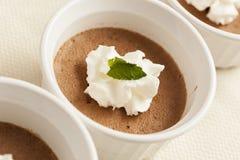 Rich Gourmet Homemade Chocolate Mousse efterrätt Royaltyfri Fotografi