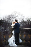 Rich groom and bride huggingoutdoor background wall grass warm a Royalty Free Stock Photography
