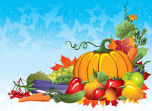 Rich harvest Stock Images