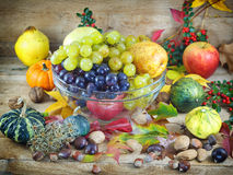 Rich harvest - autumn harvest Stock Image