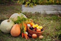 Rich Harvest im Garten der Untiefen und der Garten-Werkzeuge (PU Stockfotografie