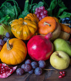 Rich harvest of various fruits Royalty Free Stock Images