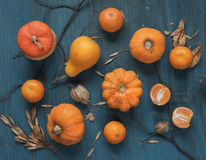 Rich harvest of various fruits Stock Photos