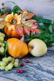 Rich harvest of various fruits and vegetables Royalty Free Stock Images