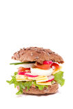 A rich healthy brown sandwich Stock Image