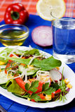 Rich and healthy vegetable salad Stock Photos