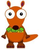 Rich kangaroo Stock Photos