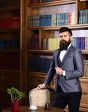 Rich man with calm face looks successful. Aristocrat stands in luxury interior near empty chair. Bearded man in expensive suit in his cabinet. Fashion, luxury royalty free stock photo