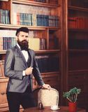 Rich man with calm face looks successful. Aristocrat stands in luxury interior near empty chair. Bearded man in expensive suit in his cabinet. Fashion, luxury royalty free stock photos