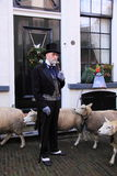 Rich man and sheep in the street Royalty Free Stock Photo