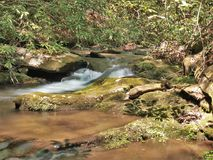 Rich Mountain Creek in Stone Mountain State Park. Water cascades over mossy rocks in Rich Mountain Creek.  Stone Mountain State Park in Low Gap, North Carolina Stock Photography
