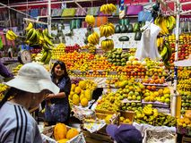 The rich offer of fruit at the market Areqipa Peru Stock Photography