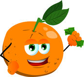 Rich orange Royalty Free Stock Images