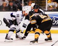 Rich Peverley, Boston Bruins adelante Foto de archivo libre de regalías