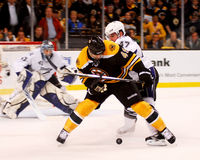 Rich Peverley, Boston Bruins forward. Stock Photos