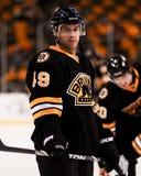 Rich Peverley, Boston Bruins forward. Stock Photo