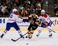 Rich Peverley Boston Bruins framåtriktat Royaltyfri Bild