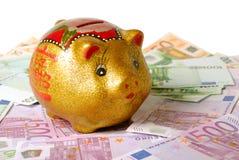 Rich Pig lizenzfreie stockfotos