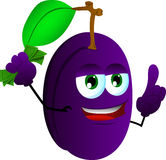 Rich plum with attitude Stock Images
