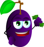 Rich plum Royalty Free Stock Photo