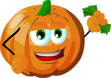 Rich pumpkin Stock Images