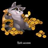 Rich Raccoon inondé en argent, fond noir Photographie stock libre de droits