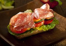 Rich sandwich Royalty Free Stock Photos