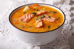 Rich soup with salmon, vegetables and thyme close-up Royalty Free Stock Image