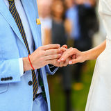 Rich stylish groom and bride  put ring near the arch of sunflowe Royalty Free Stock Photos